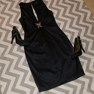 Express silk plunge dress